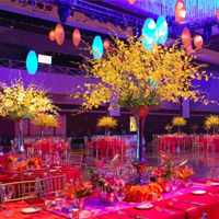 Event Suppliers: Learn How To Choose Wisely